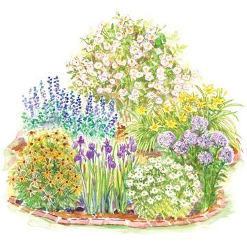 Easy-Care Romance Garden Plan -   Enjoy these plants for their soft, lush colors and easy-growing nature.