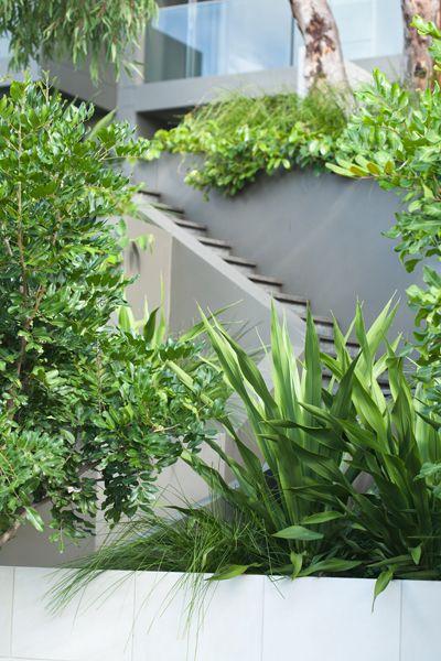 landscape design | Stark Design