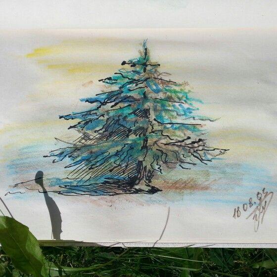 Sketch. Anastasia Matinyan.