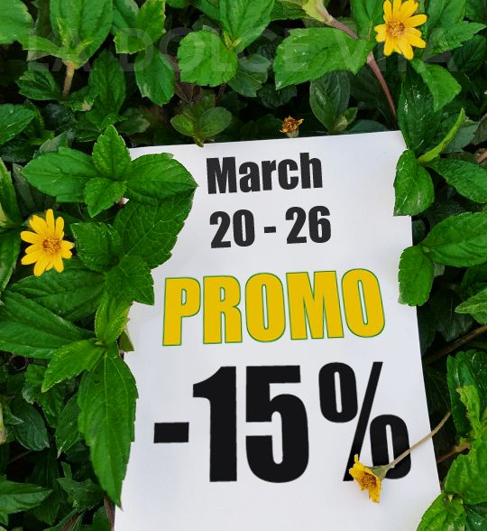 March 20th - March 26th - 15% DISCOUNT ON ALL THE COLLECTION. Check it out!