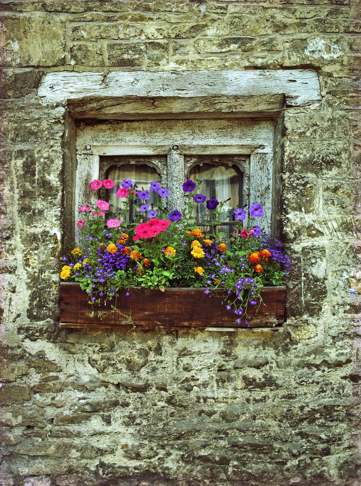"""""""English Window Box"""" by SdosRemedios on Flickr - An English Window Box"""