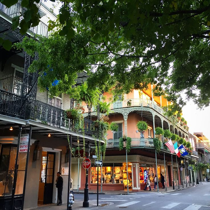 January in New Orleans Weather, What to Pack, and What to