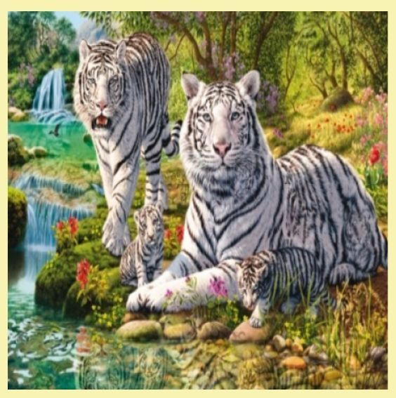 For Everything Genealogy - White Tiger Clan Animal Themed Maxi Wooden Jigsaw Puzzle 250 Pieces, $65.00 (http://www.foreverythinggenealogy.com.au/white-tiger-clan-animal-themed-maxi-wooden-jigsaw-puzzle-250-pieces/)