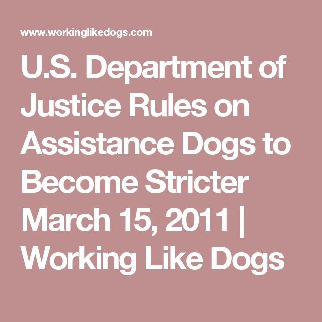 U.S. Department of Justice Rules on Assistance Dogs to Become Stricter March 15, 2011 | Working Like Dogs