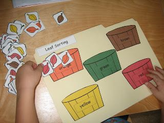 Fall leaf sorting activity.