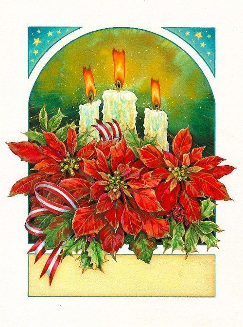 Пуансеттия открытка, мартом картинки