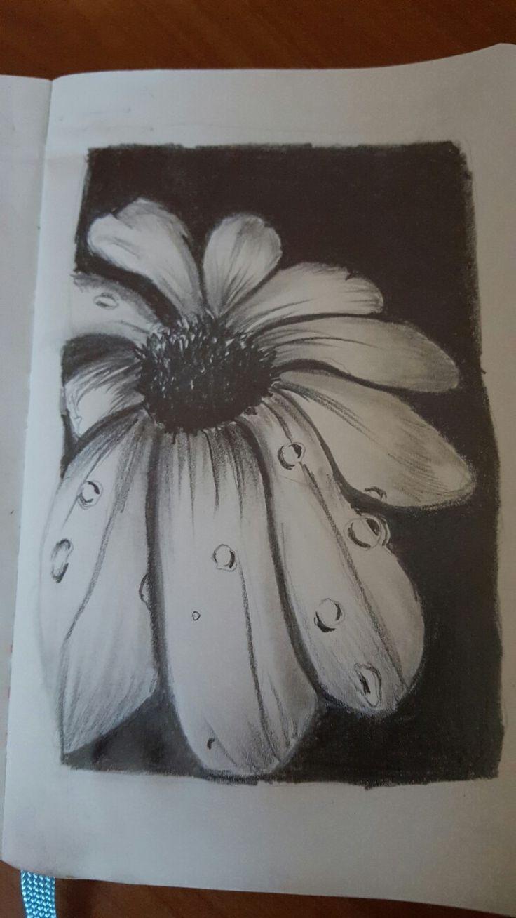 grafit rajz moleskin