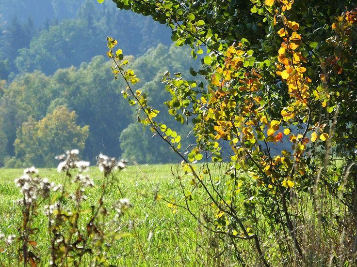 Осень в Саксонской и Богемской Швейцарии.