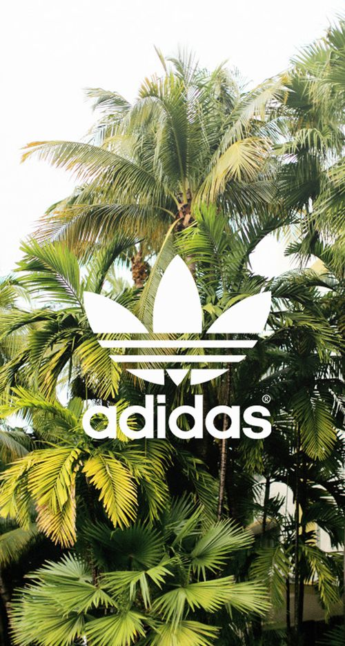 Adidas Wallpaper  Tropical island reminds me to take a stroll around dont ya think?