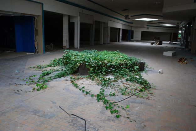 Completely Surreal Photos Of America's Abandoned Malls @Jared Martin thought you might like this!