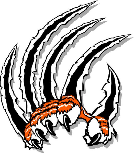 Claws team decal sports -Tiger Image for  mascot detail