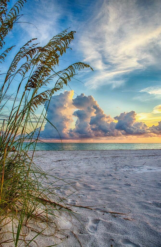 Sunset clouds over a tropical beach