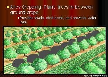Plant Science/Soil Science: Erosion Lesson, Soil Conservation
