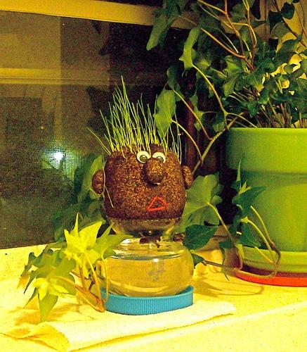 """How to Make a """"Grass Head"""" via www.wikiHow.com"""