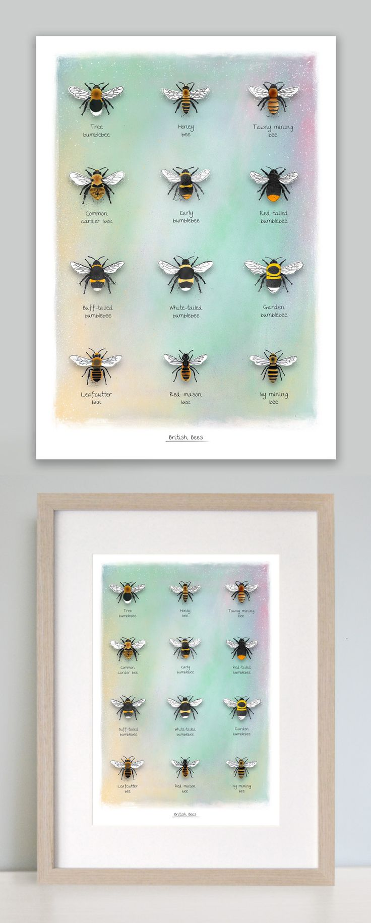 This pretty identification bee print illustrating a collection of British bees makes for a lovely addition to any home bringing nature indoors. Available in A4 and A3 sizes this illustration features the most common of British bees including: Tree bumblebee, honeybee, Tawny mining bee, Common carder bee, Early bumblebee, Red tailed bumblebee, Buff-tailed bumblebee, White-tailed bumblebee, Garden bumblebee, Leafcutter bee, Red mason bee and the Ivy mining bee. www.leemorris.org.uk