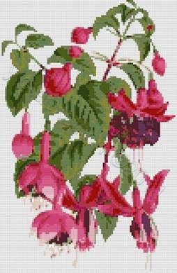 Fuchsia flowers cross stitch kit or pattern