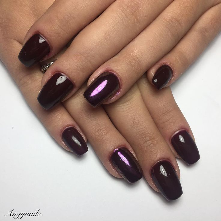 Dark Purple Nails! #Brunello #nails #nail #fashion #style #brunello #cute #beauty #beautiful #pretty #girl #girls #stylish #ongles #onglesengel #ricostruzioneunghie #nailart #coperturaingel #darkviolet #photooftheday #miniballerina #unhas #nailporn #beautifulnails #love #shiny #polish #nailpolish #nailswag