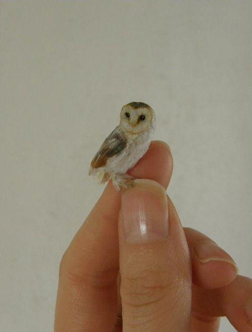 Anya Stone miniature owl sculpture Pinned by www.myowlbarn.com