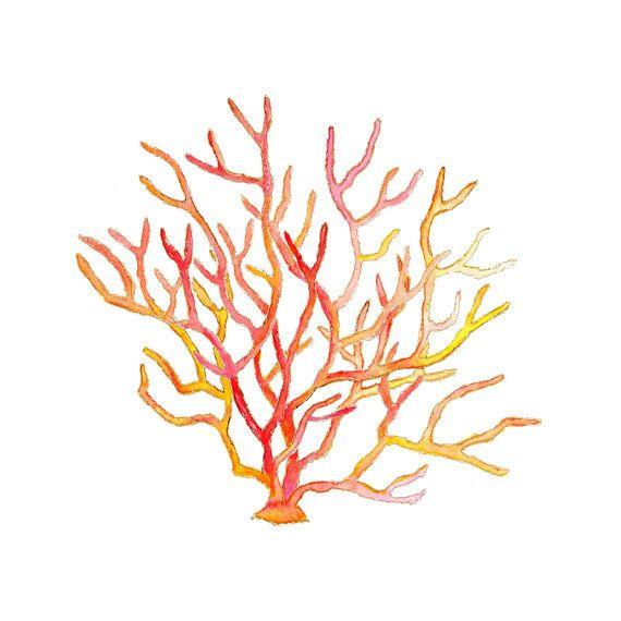 Corail rouge.  Art côtière.  Plage Art Print.