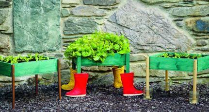 Schneckensichere Salatkästen – Projekt aus dem Buch «Selbst gebaut für meinen Gemüsegarten» Basteltipp in familien-welt.de   – Schönes für den Garten selbstgemacht