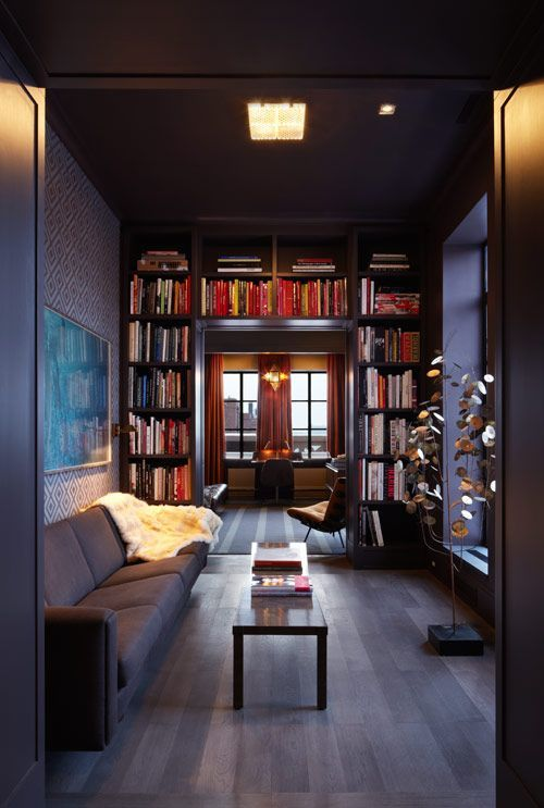 """Shelf library"" at the end of a narrow room, framing the windows"