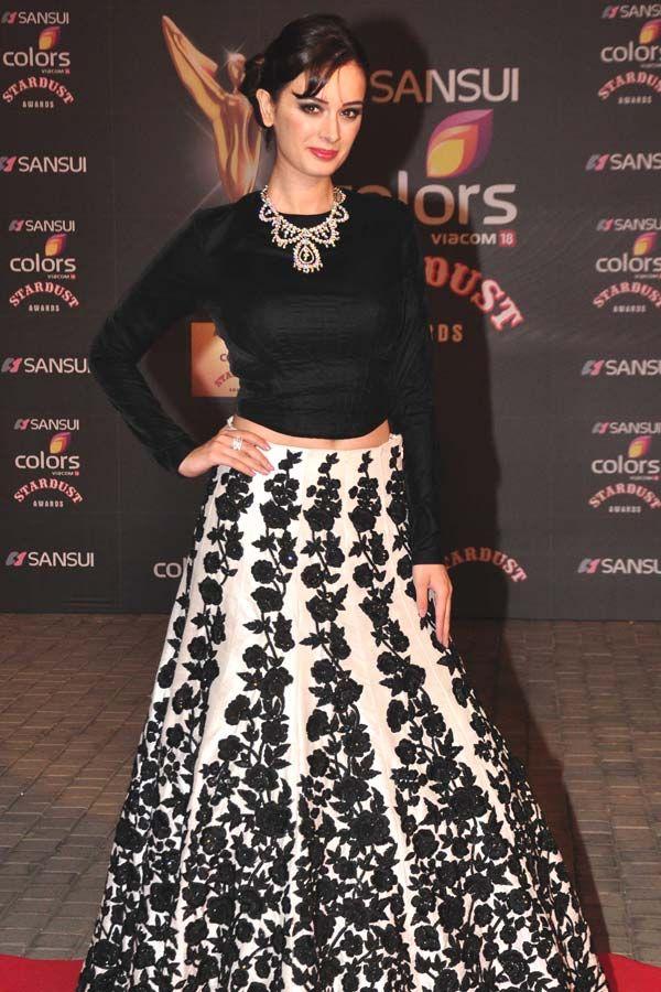 Evelyn Sharma at the Stardust Awards 2015. #Bollywood #StardustAwards2015 #Fashion #Style #Beauty #Hot #Punjabi