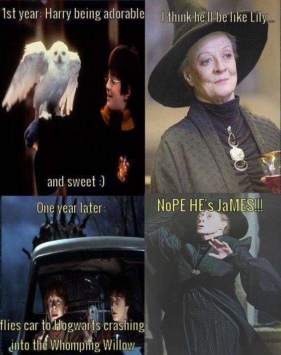NOPE HE'S JAMES!!   Harry Potter/Hogwarts in 2019   Harry potter
