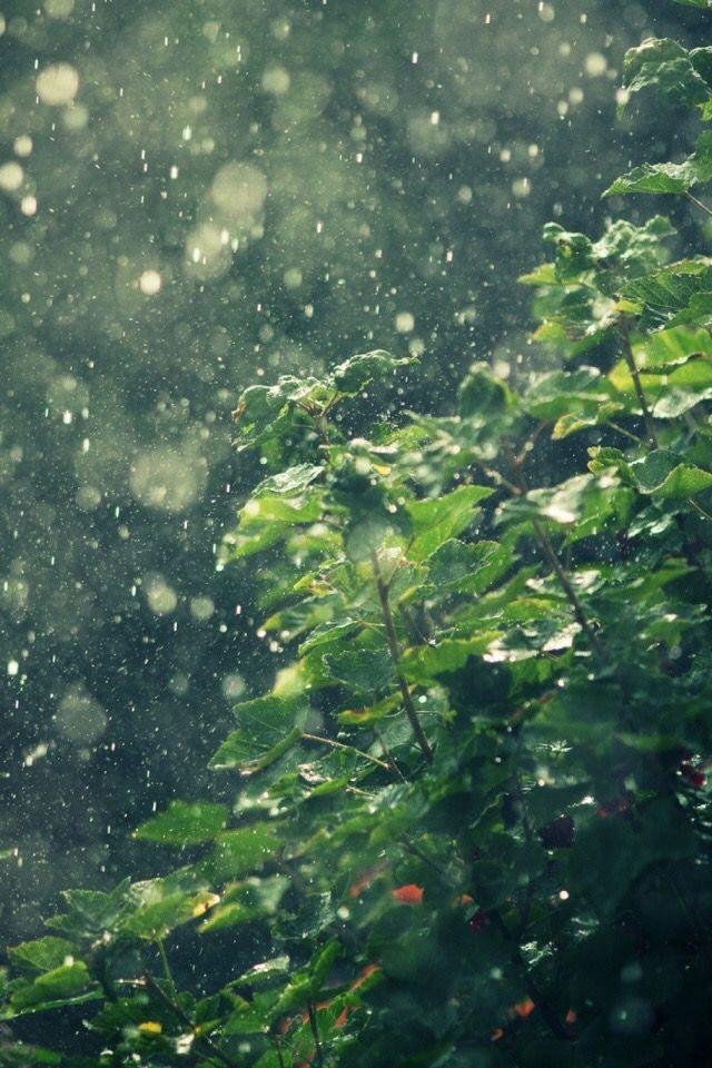 Pin By Kpop On Cute Wallpapers Wallpaper Rain Wallpapers
