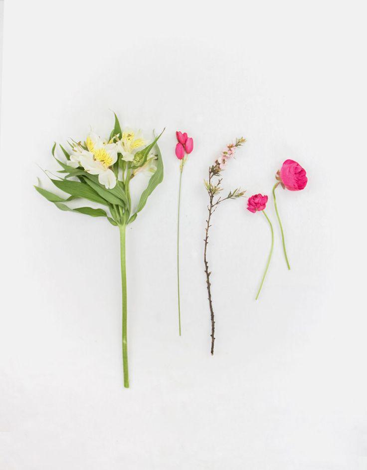 of-noble-nature-flowers-wellington-2