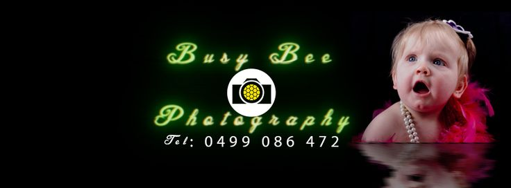 Busy Bee Photography