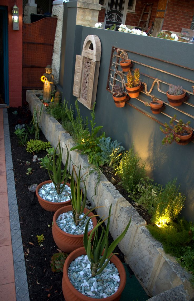 Interesting herbs and succulents along the wall #herbgardens