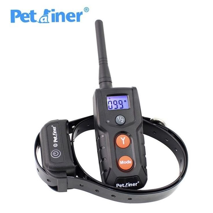 NEW Rechargeable And Waterproof Dog Electric Shock Training Collar  | eBay