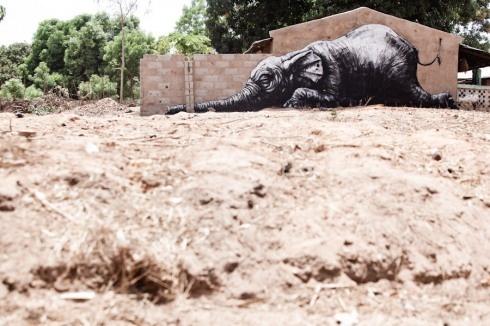 Street Art in Africa: Street Artists, Zombie, Elephant, Artists Roa, Wide Open, Africa, Open Wall, Photo, Streetart