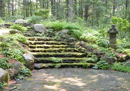 Best 25 hill garden ideas on pinterest spring garden for Spring hill nursery garden designs