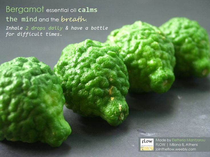 Bergamot oil calms the mind and the breath. Inhale 2 drops daily & have a bottle for difficult times.  #bergamot #essentialoils #herbs forstress #beatstress #learnherbs #herbsasfood #herbalmedicine #herbalteas #herbs #aromatherapy #stressfree