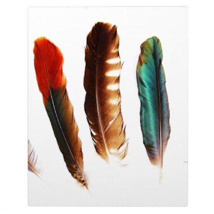 colorful feathers plaque - red gifts color style cyo diy personalize unique