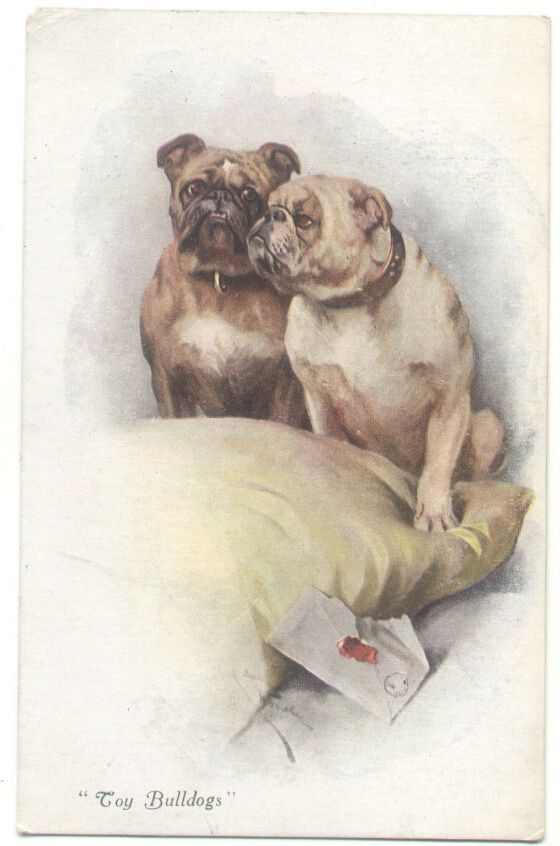 """""""Toy Bulldogs"""" DOGS Art Signed old DOG Postcard"""