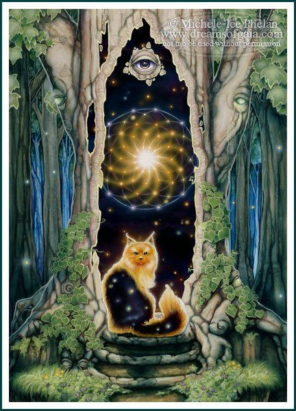 Tarot Oracles And Other Signs Along The: 36 Best Images About Oracle Cards On Pinterest