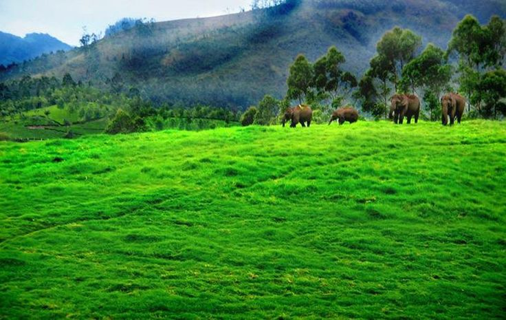 Hill stations and tourism in kerala