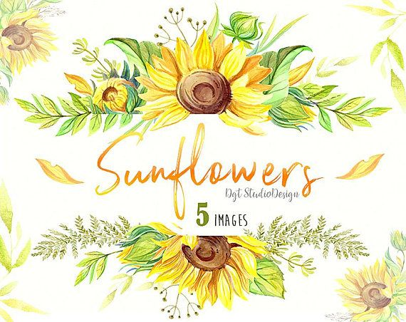 Watercolor Sunflowers Wreath Frame Clipart Rustic Summer Clipart