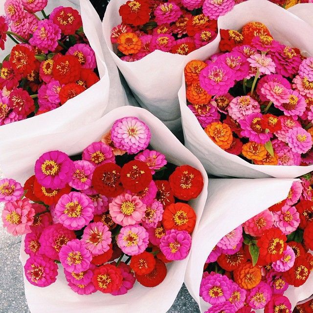 Pink flowers? Yes please! We are all about a bundle of flowers! Especially when they are this cute and cheerful!
