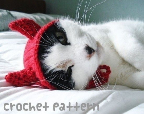 how cute is this ? Crochet Cat Hat Pattern