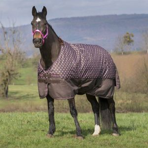 Equi-Theme 600D Polka Dot Lightweight Turnout Rug