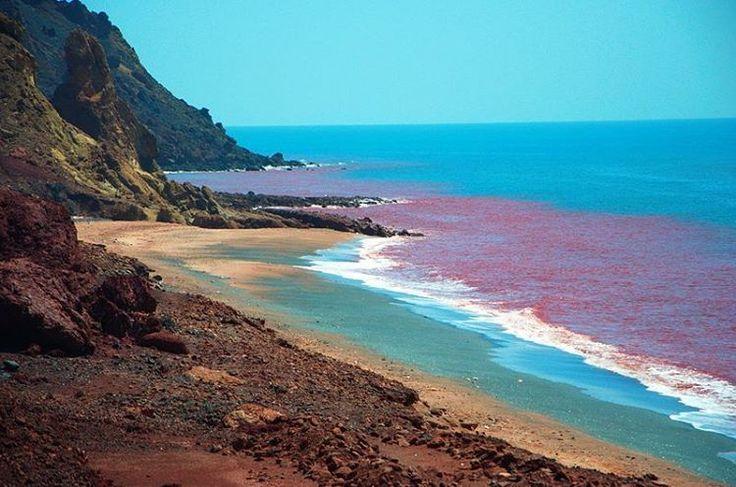 Hormuz Island- #Persian_Gulf, Iran (Persian: جزیره هرمز در خلیج فارس) Photo Credit: Afarin Beheshti