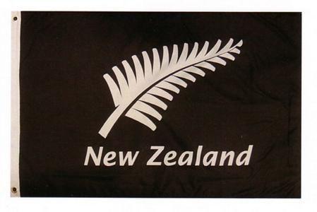 Silver Fern Flag  http://www.shopenzed.com/silver-fern-flag-xidp159045.html
