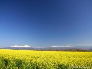 Shuujitsu no oka. Looking for more information aboout Hokkaido? Go Visit Asahikawa City. http://www.city.asahikawa.hokkaido.jp/