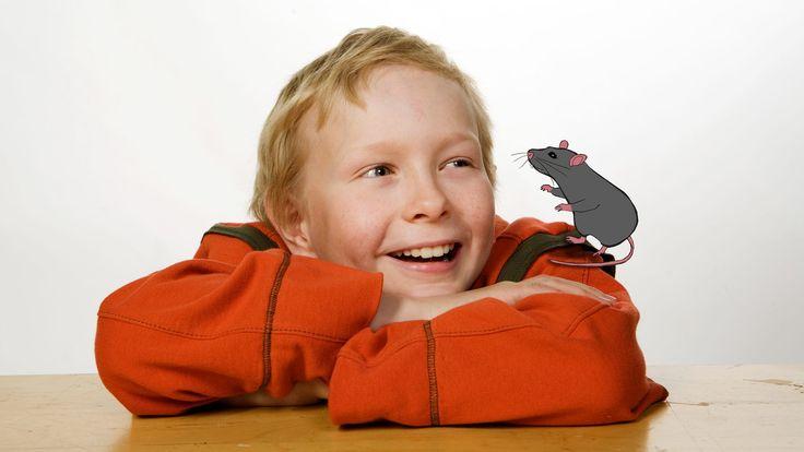 Eino-poika perustaa lemmikkirottansa Taunon kanssa kotipihan vajaan etsivätoimiston. Vakoilun pariin Einon inspiroi naapurissa asuva, kierrättämisestä piittaamaton herra Mustaparta.