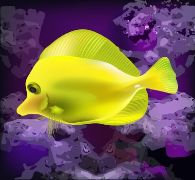 ilustración vectorial - pez