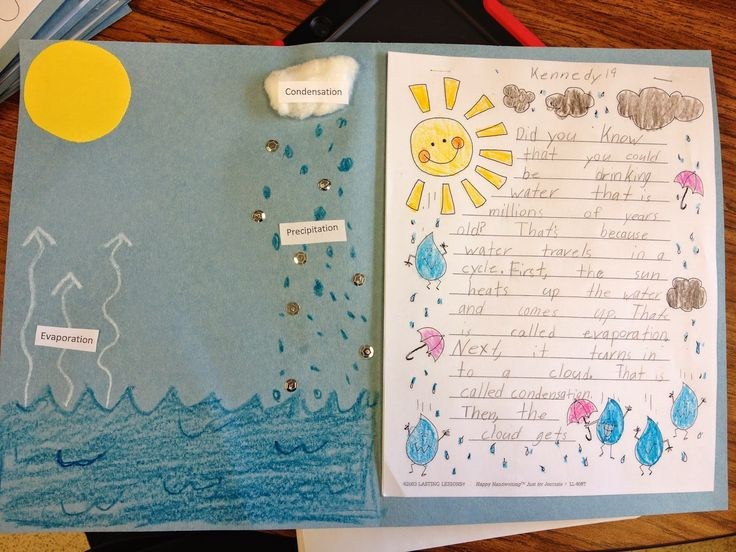 Classroom Decor Birds ~ Simply second grade water cycle writing