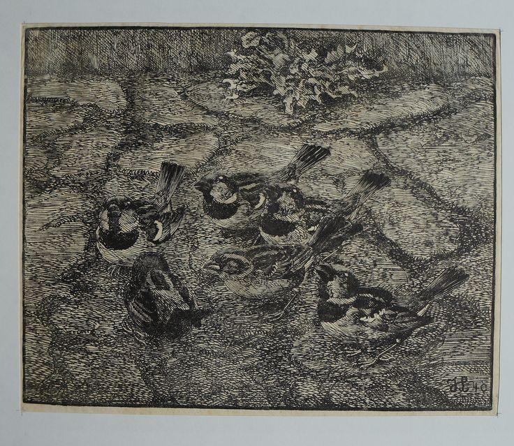 Gråspurve - Johannes Larsen - Træsnit 1940